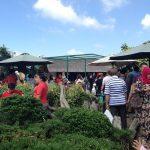 Park at Farmhouse Lembang