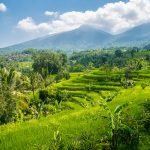 Bali UNESCO world heritages Jatiluwih Rice Fields