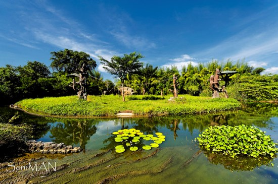 Garden in Bali Safari and Marine Park