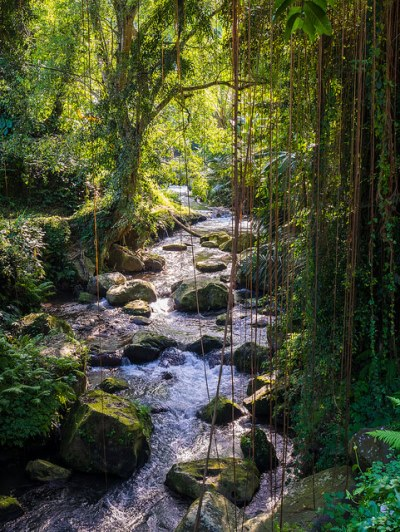 Pakerisan River near Gunung Kawi Temple