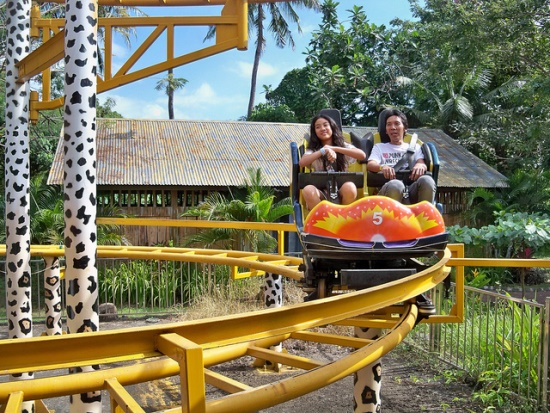 Rides in Bali Safari and Marine Park