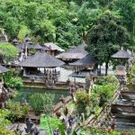 The pond and holy springs at Gunung Kawi Temple
