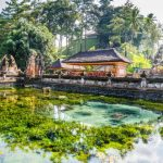 The pond at the center of Pura Tirta Empul