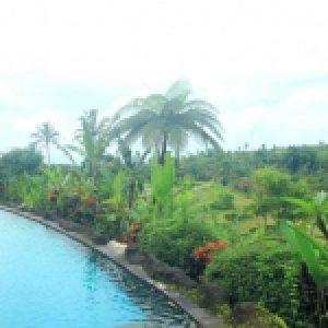 Villa Lumbung Jatiluwih